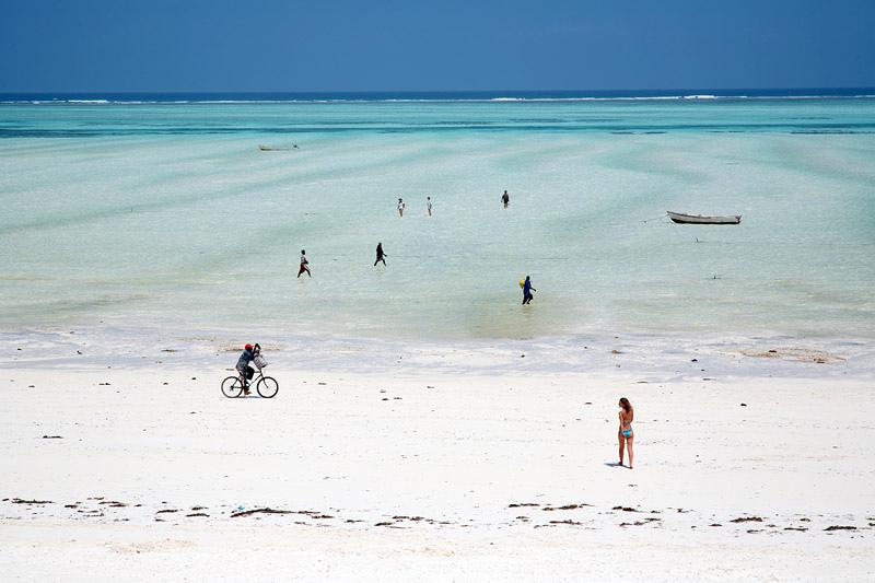 Things to do in Zanzibar Tanzania