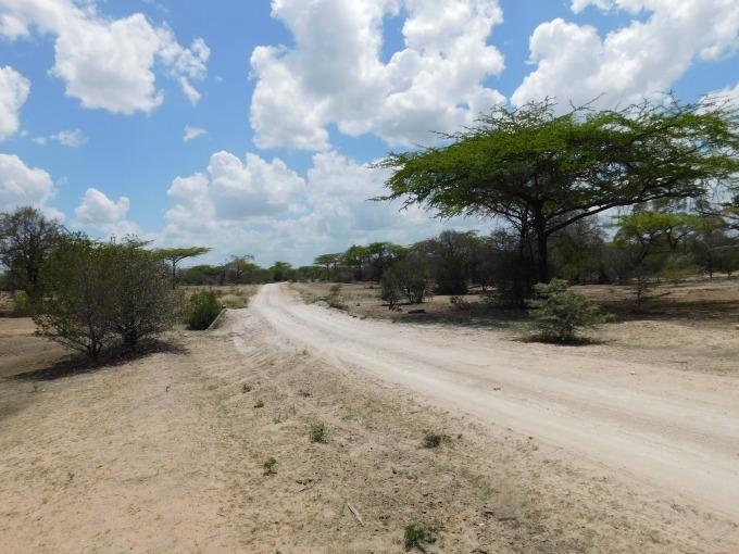 Selous Game Reserve Safari Tanzania | IngridZenMoments
