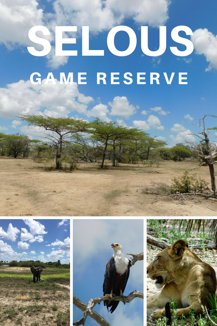Selous Game Reserve (1)
